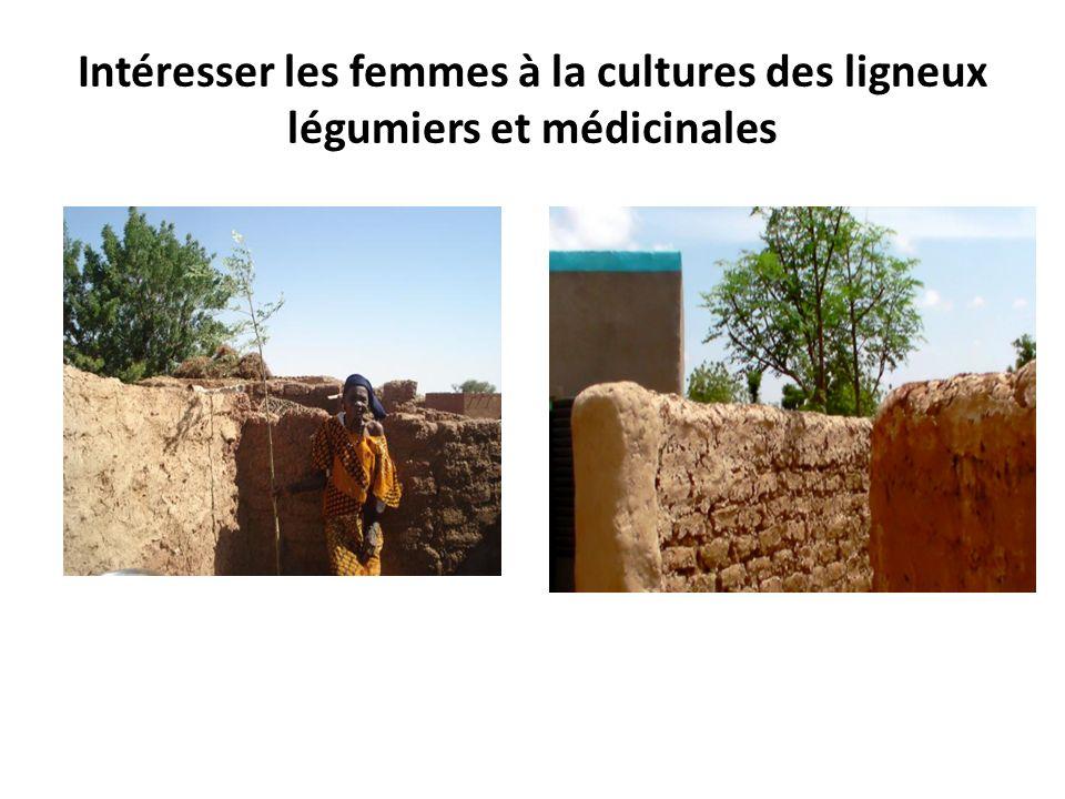 Intéresser les femmes à la cultures des ligneux légumiers et médicinales