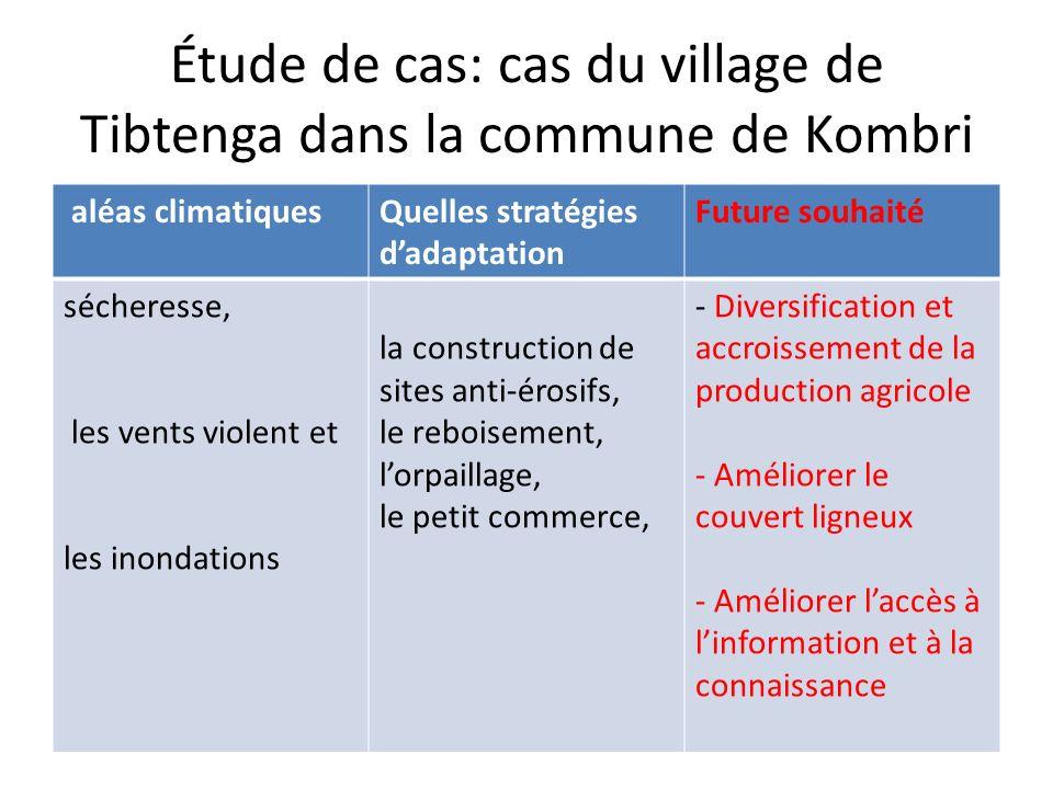 Étude de cas: cas du village de Tibtenga dans la commune de Kombri aléas climatiquesQuelles stratégies dadaptation Future souhaité sécheresse, les ven