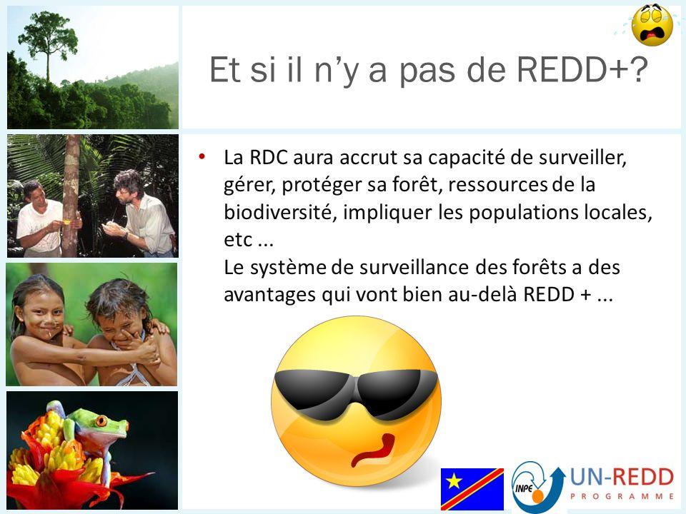 La RDC aura accrut sa capacité de surveiller, gérer, protéger sa forêt, ressources de la biodiversité, impliquer les populations locales, etc... Le sy