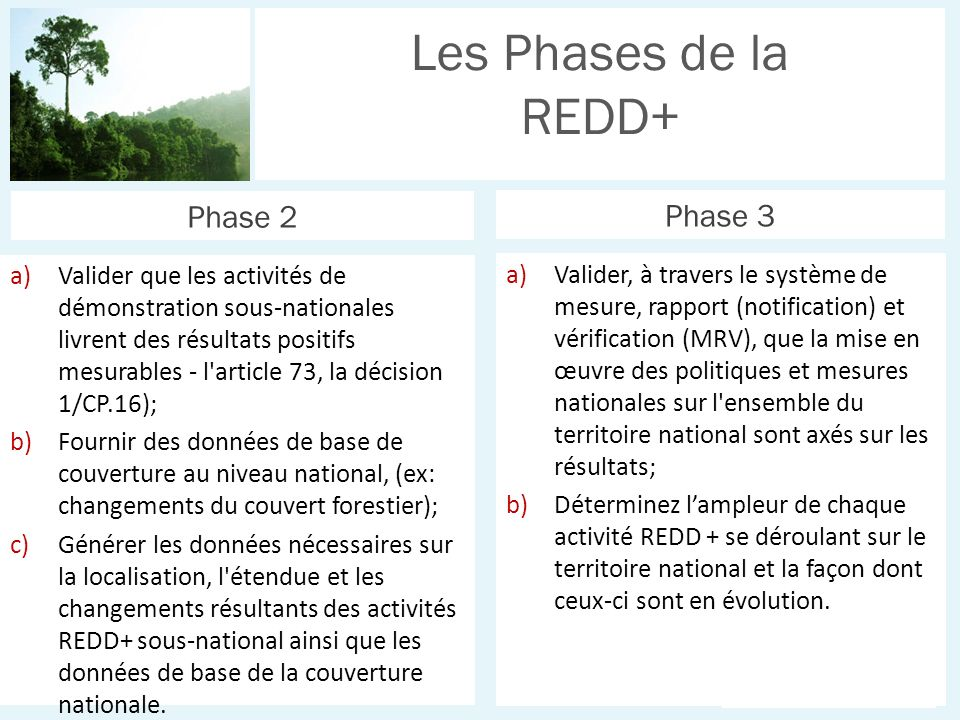 UN-REDD P R O G R A M M E a)Valider, à travers le système de mesure, rapport (notification) et vérification (MRV), que la mise en œuvre des politiques et mesures nationales sur l ensemble du territoire national sont axés sur les résultats; b)Déterminez lampleur de chaque activité REDD + se déroulant sur le territoire national et la façon dont ceux-ci sont en évolution.