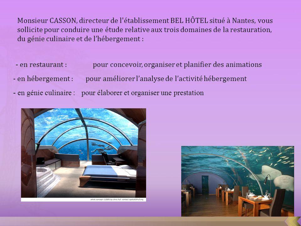 Monsieur CASSON, directeur de l'établissement BEL HÔTEL situé à Nantes, vous sollicite pour conduire une étude relative aux trois domaines de la resta