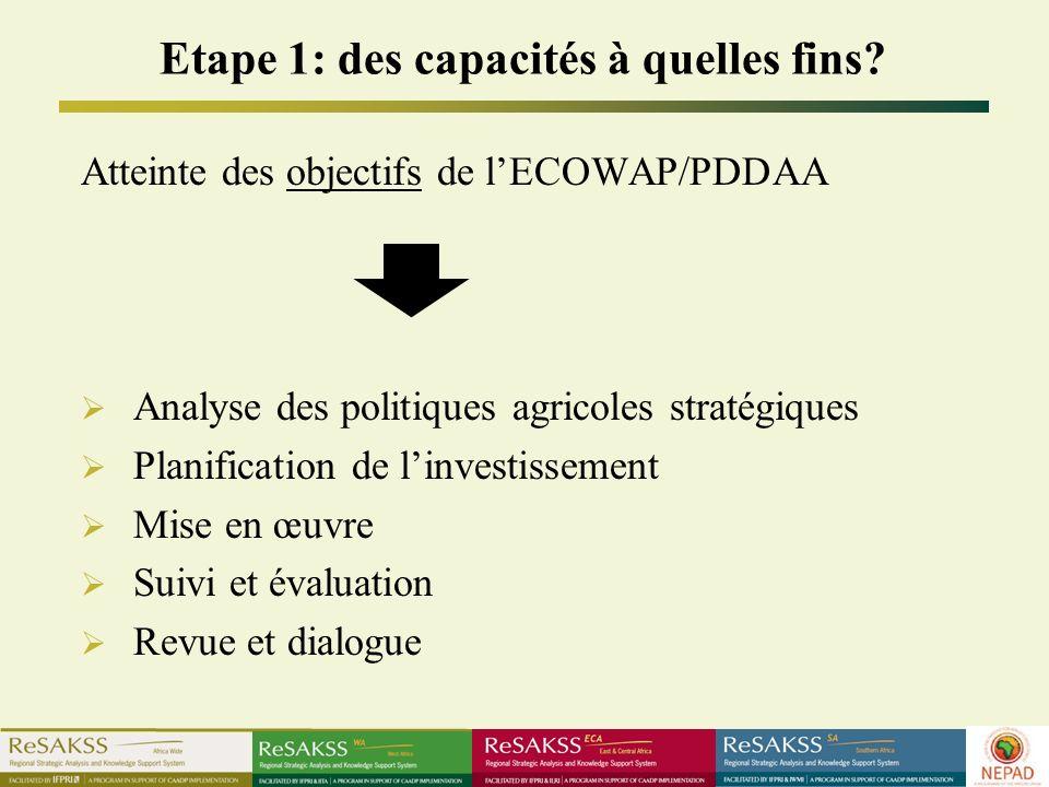 Etape 1: des capacités à quelles fins? Atteinte des objectifs de lECOWAP/PDDAA Analyse des politiques agricoles stratégiques Planification de linvesti