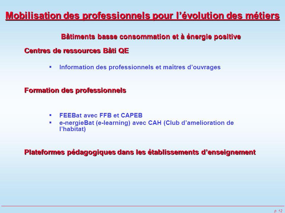 p. 12 Mobilisation des professionnels pour lévolution des métiers Bâtiments basse consommation et à énergie positive Centres de ressources Bâti QE Inf