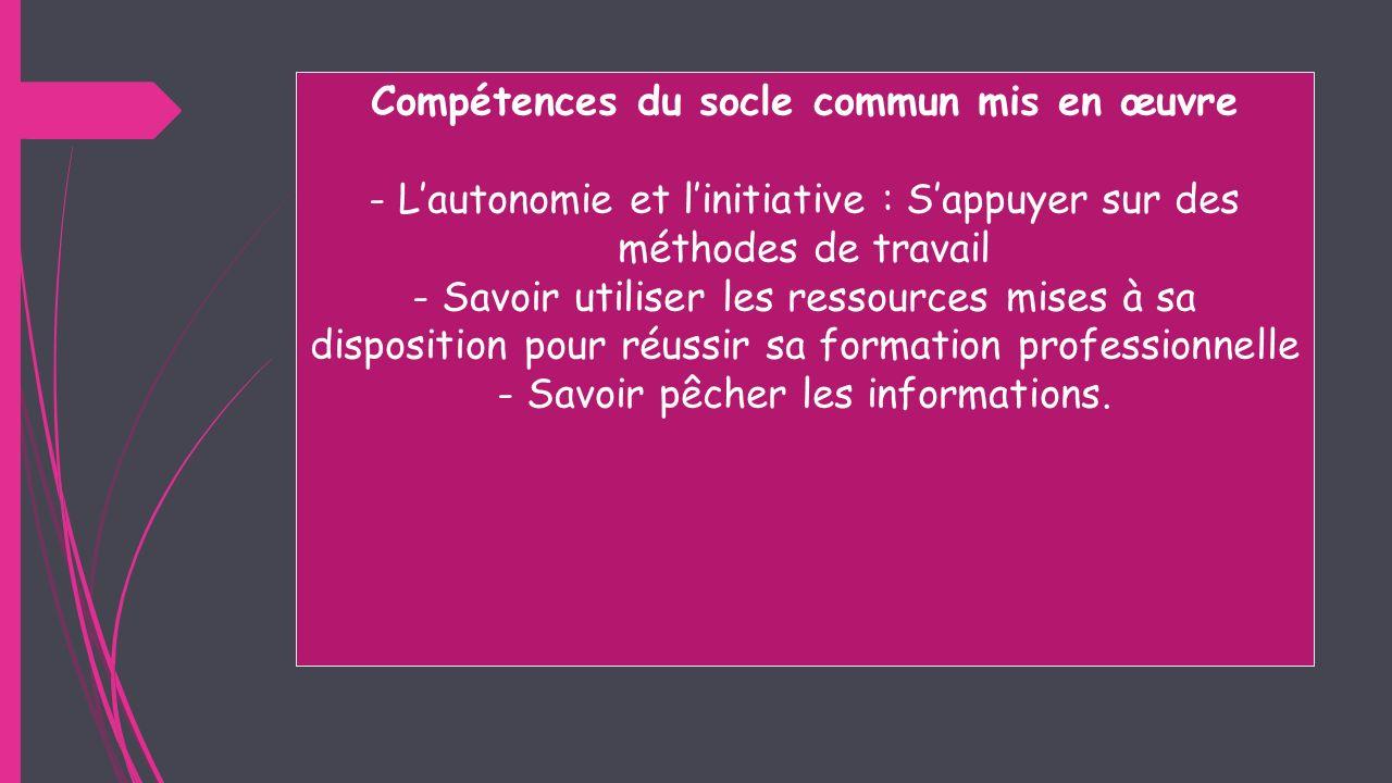 Compétences du socle commun mis en œuvre - Lautonomie et linitiative : Sappuyer sur des méthodes de travail - Savoir utiliser les ressources mises à s