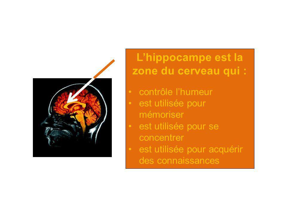 Lhippocampe est la zone du cerveau qui : contrôle lhumeur est utilisée pour mémoriser est utilisée pour se concentrer est utilisée pour acquérir des c