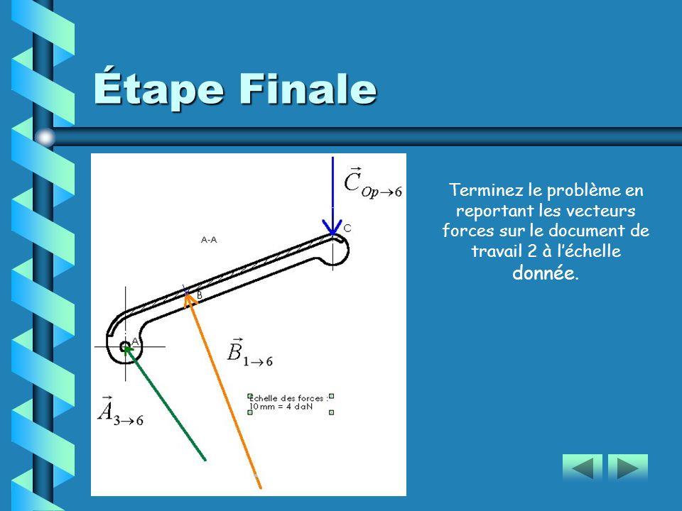 Étape Finale Terminez le problème en reportant les vecteurs forces sur le document de travail 2 à léchelle donnée.