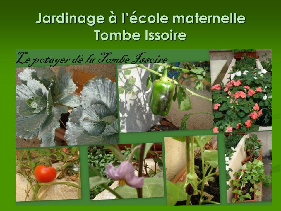 Jardinage à lécole maternelle Tombe Issoire