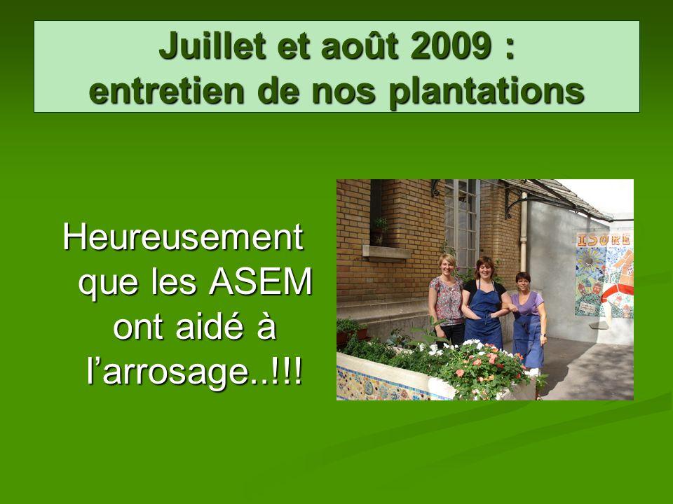 Juillet et août 2009 : entretien de nos plantations Heureusement que les ASEM ont aidé à larrosage..!!!