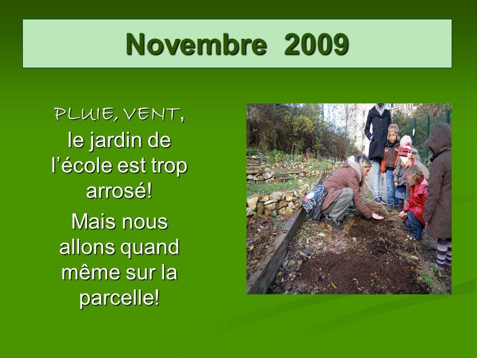 Novembre 2009 PLUIE, VENT, le jardin de lécole est trop arrosé! Mais nous allons quand même sur la parcelle!