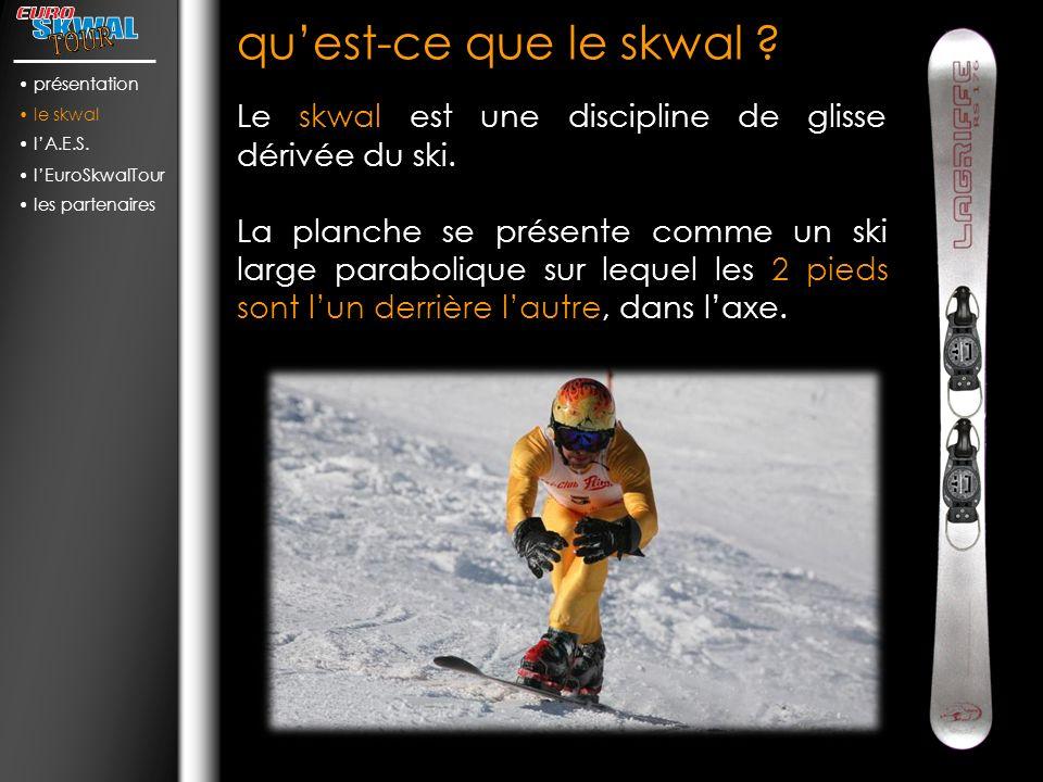quest-ce que le skwal .Le skwal est une discipline de glisse dérivée du ski.