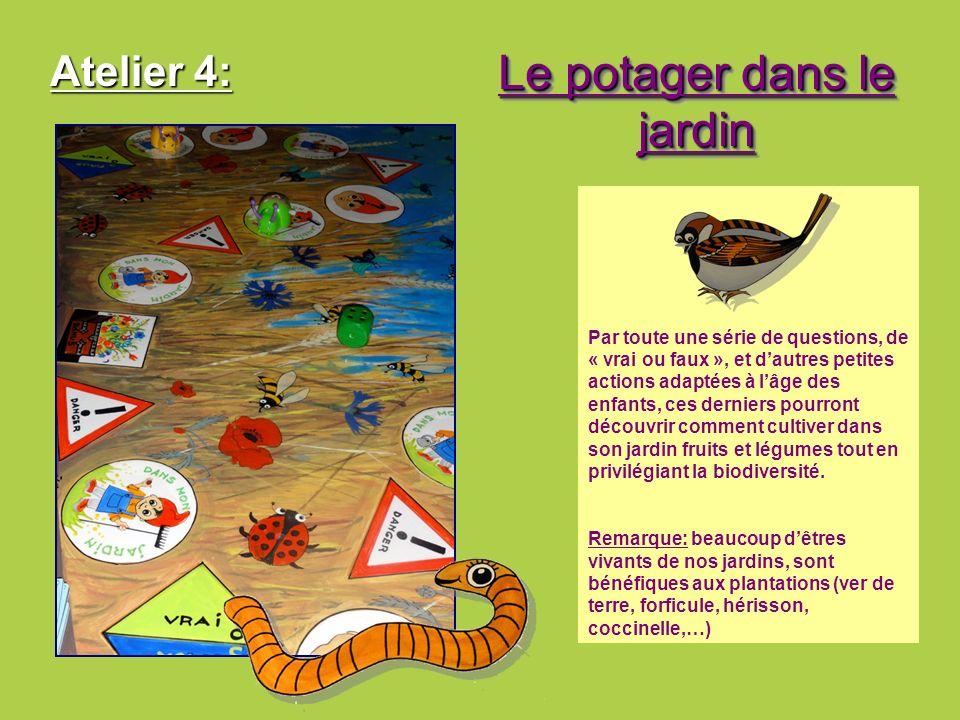 Atelier 4: Le potager dans le jardin Par toute une série de questions, de « vrai ou faux », et dautres petites actions adaptées à lâge des enfants, ce