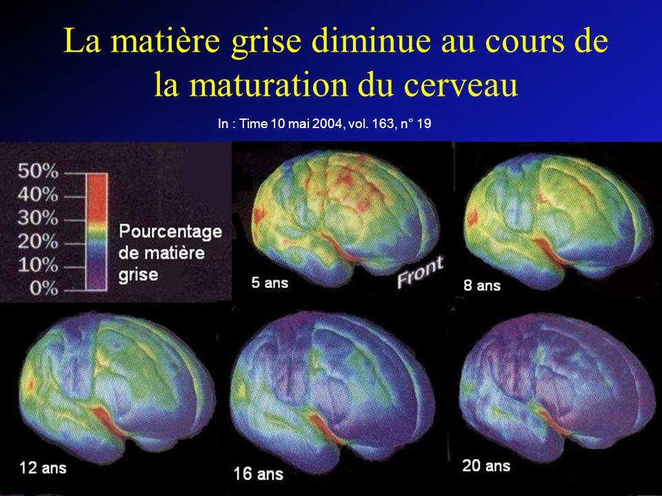 La matière grise diminue au cours de la maturation du cerveau In : Time 10 mai 2004, vol.