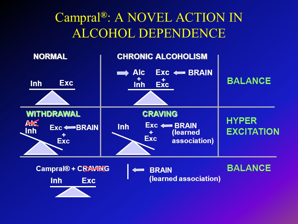 Campral ® : A NOVEL ACTION IN ALCOHOL DEPENDENCE NORMAL CHRONIC ALCOHOLISM BALANCE WITHDRAWALCRAVING HYPER EXCITATION BALANCE Inh Exc Inh Exc Alc + Ex