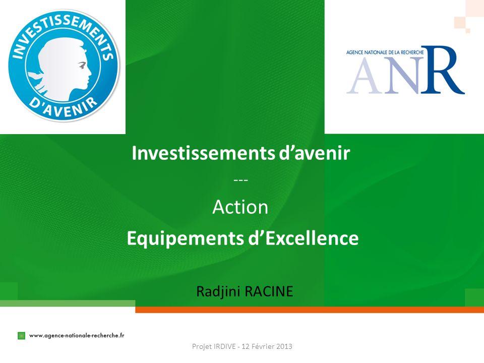 Investissements davenir --- Action Equipements dExcellence Projet IRDIVE - 12 Février 2013 Radjini RACINE