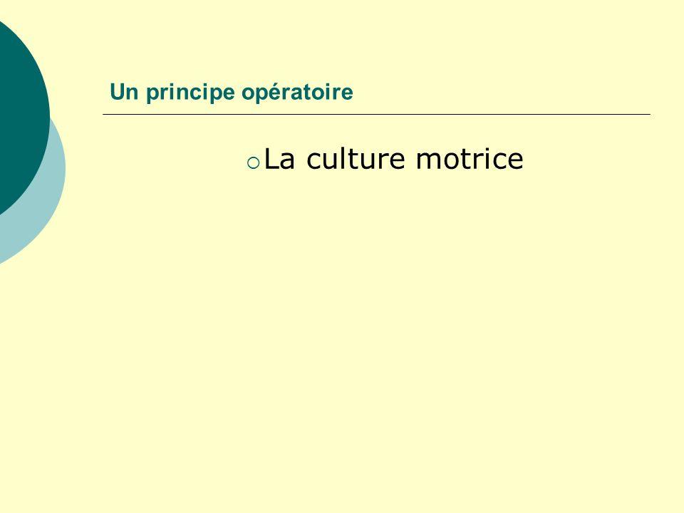 Un principe opératoire La culture motrice