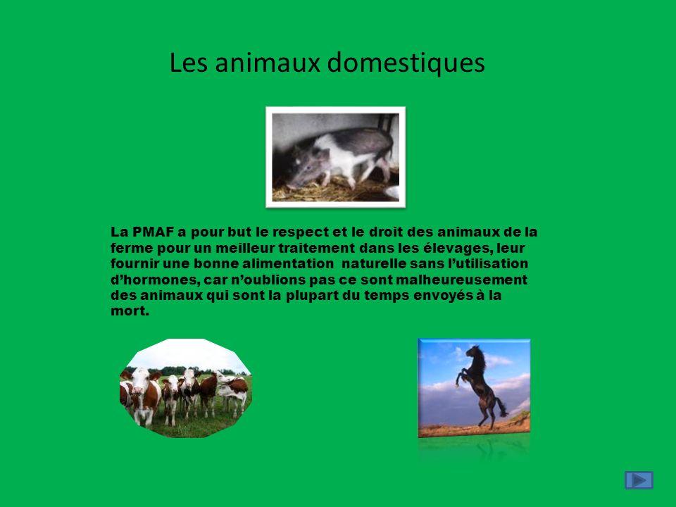 Les animaux domestiques La PMAF a pour but le respect et le droit des animaux de la ferme pour un meilleur traitement dans les élevages, leur fournir
