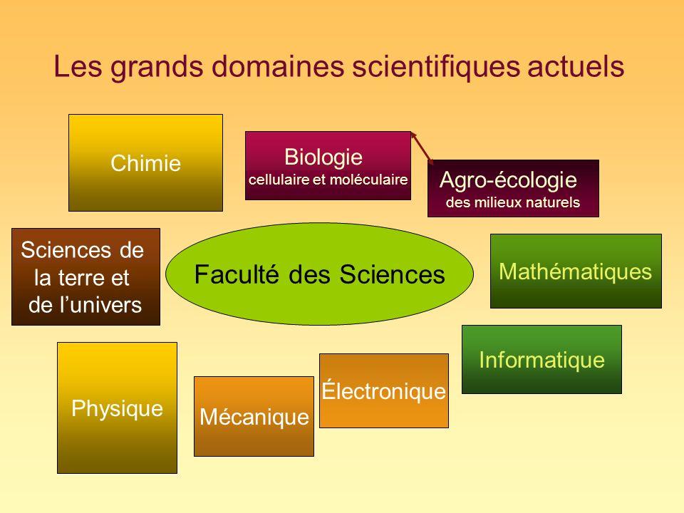 Les grands domaines scientifiques actuels Biologie cellulaire et moléculaire Physique Électronique Mécanique Mathématiques Informatique Chimie Agro-éc