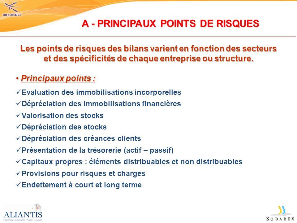 Les points de risques des bilans varient en fonction des secteurs et des spécificités de chaque entreprise ou structure. Principaux points : Principau