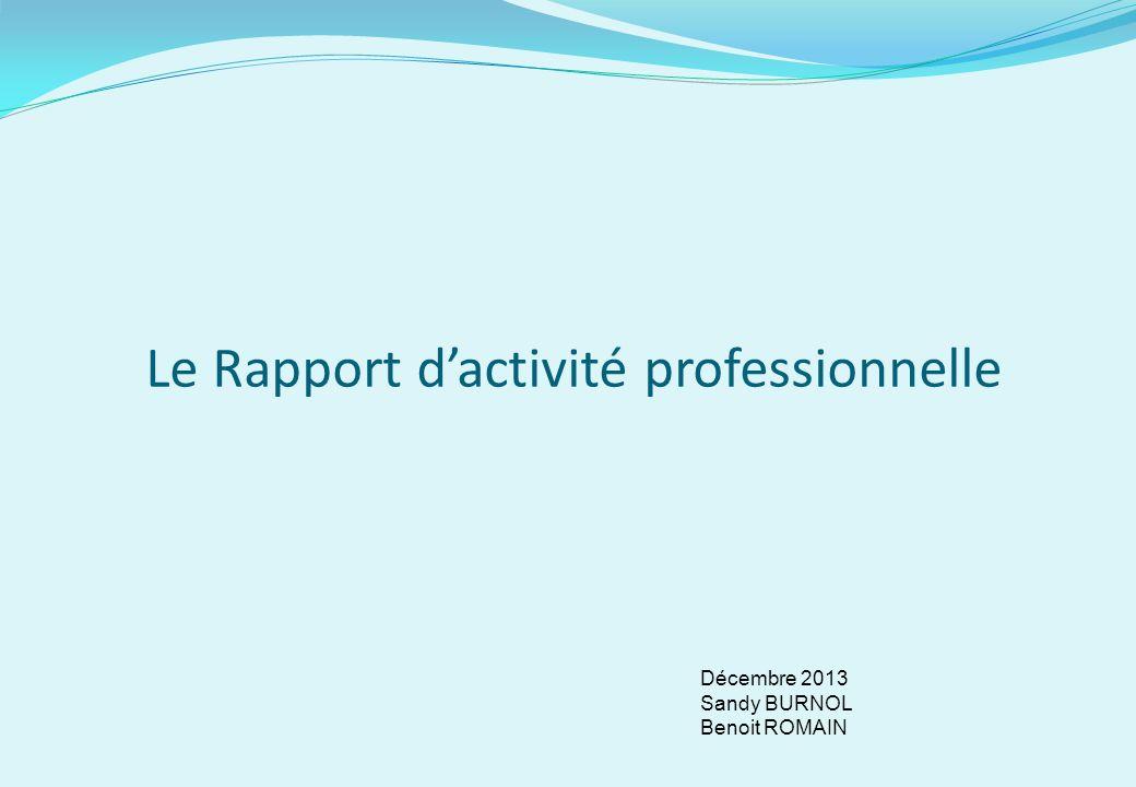 Le Rapport dactivité professionnelle Décembre 2013 Sandy BURNOL Benoit ROMAIN