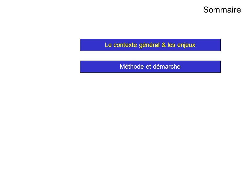 AVRIL 2005 Thierry RAMARD 37 Sommaire Le contexte général & les enjeux Méthode et démarche Sommaire