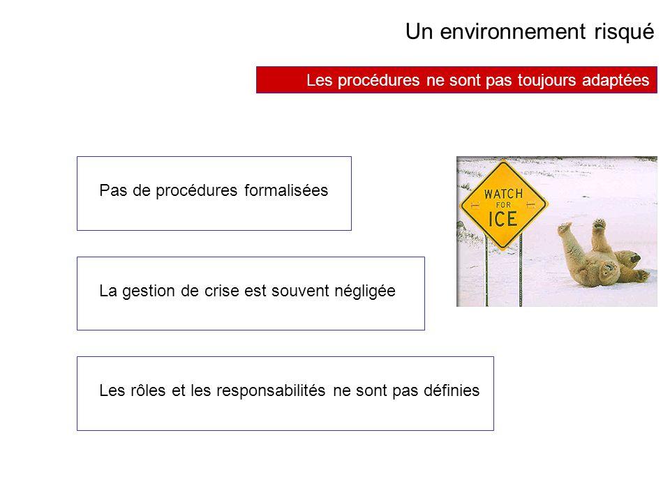 AVRIL 2005 Thierry RAMARD 42 Un environnement risqué Les procédures ne sont pas toujours adaptées Pas de procédures formalisées Les rôles et les respo