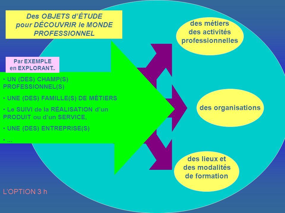des lieux et des modalités de formation des métiers des activités professionnelles des organisations Par EXEMPLE en EXPLORANT..