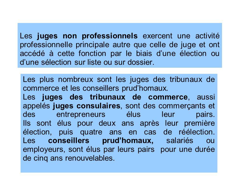 Les juges non professionnels exercent une activité professionnelle principale autre que celle de juge et ont accédé à cette fonction par le biais dune