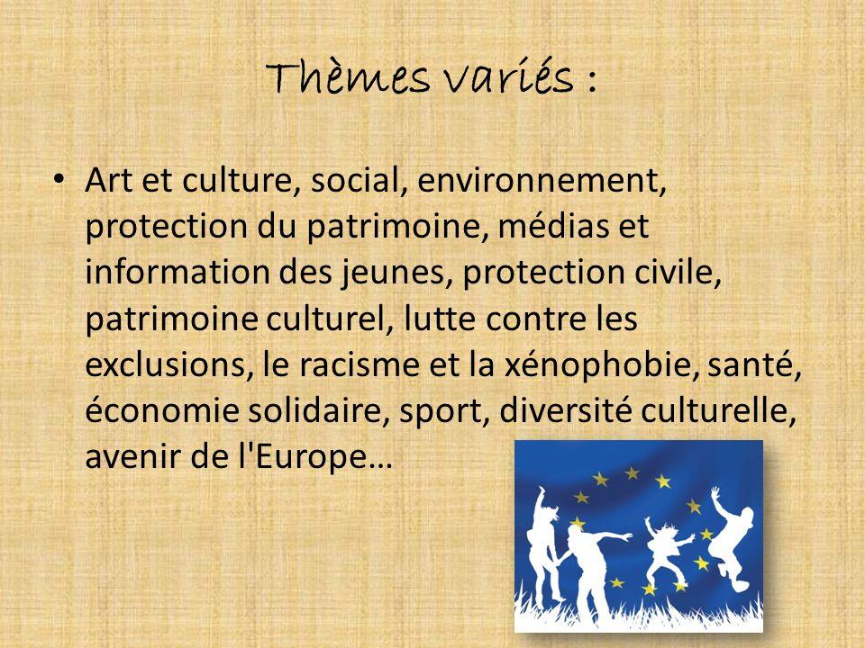 Thèmes variés : Art et culture, social, environnement, protection du patrimoine, médias et information des jeunes, protection civile, patrimoine cultu