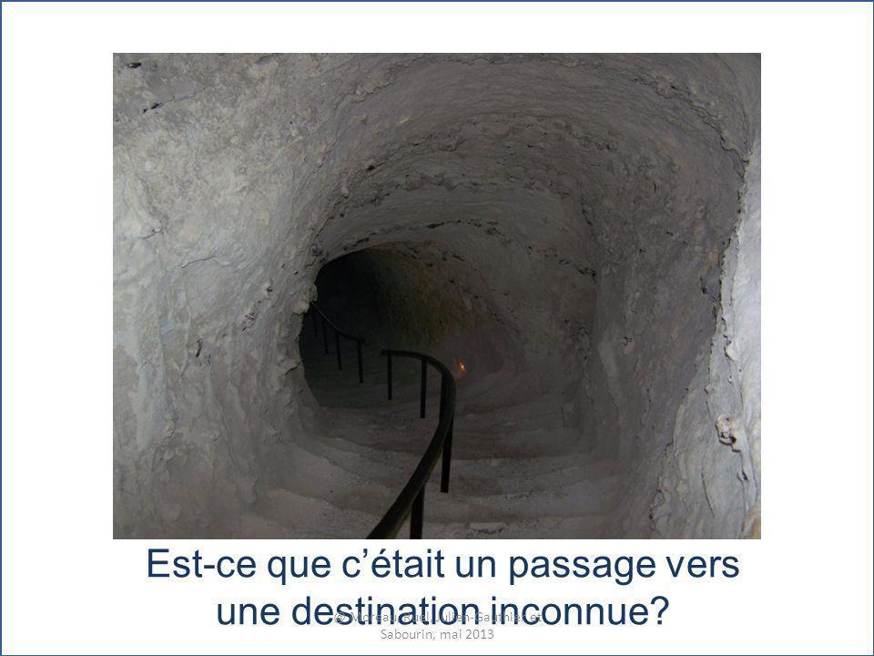 Est-ce que cétait un passage vers une destination inconnue? @ Moreau, Ruel, Julien-Gauthier et Sabourin, mai 2013