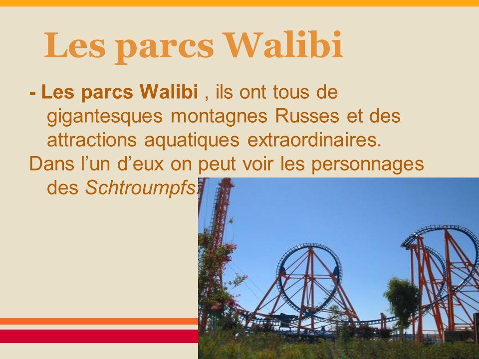 Les parcs Walibi - Les parcs Walibi, ils ont tous de gigantesques montagnes Russes et des attractions aquatiques extraordinaires. Dans lun deux on peu