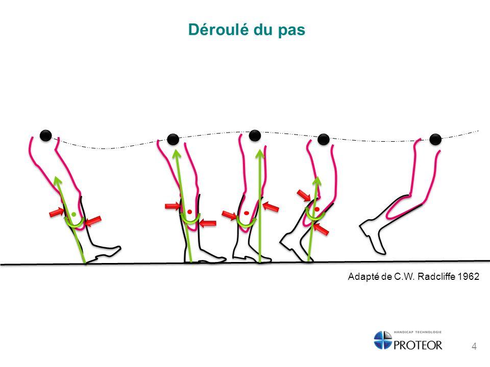 Optimisation du déroulé du pas pour une personne a mobilité réduite Permettre une évolution du tibia / verticale Diminuer les pressions lors de lappui sur lavant pied 5 S A C H