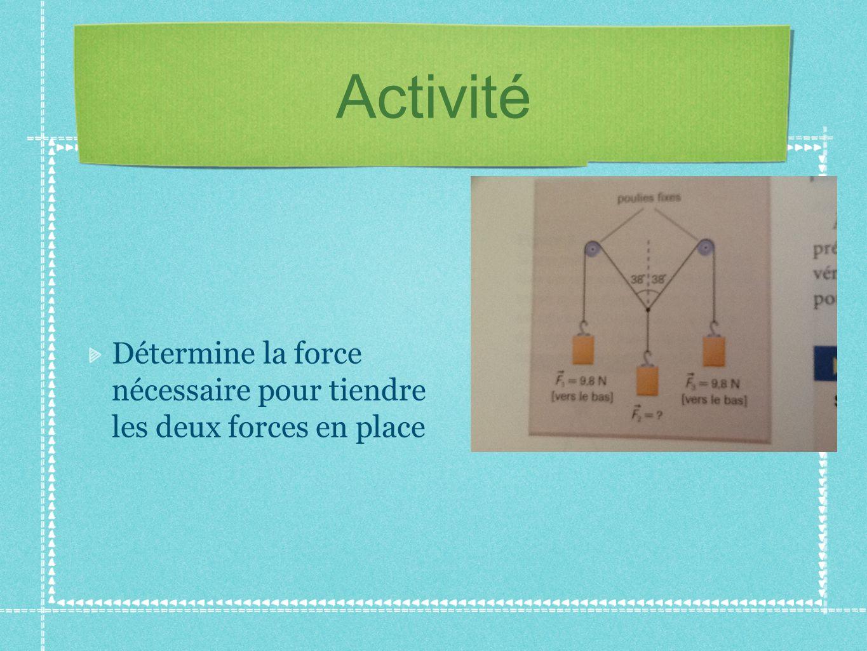 Activité Détermine la force nécessaire pour tiendre les deux forces en place