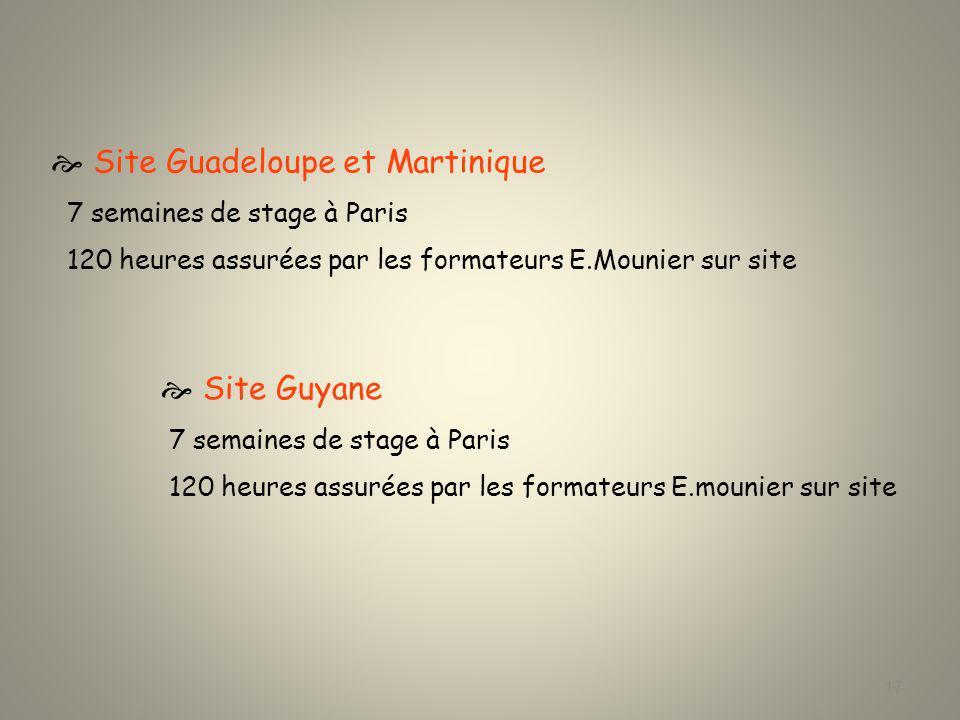 Master 1 Nombre détudiants Guadeloupe : 8 Guyane :8 Martinique :4 Heures de face à face pédagogique assurées par Ifagec Guadeloupe + Martinique 142 h Guyane: 142 h Partenariat : ICP – E.Mounier Suivi des écrits professionnels : 160h Visites de stages :2 visites/étudiant soit 40 visites 18