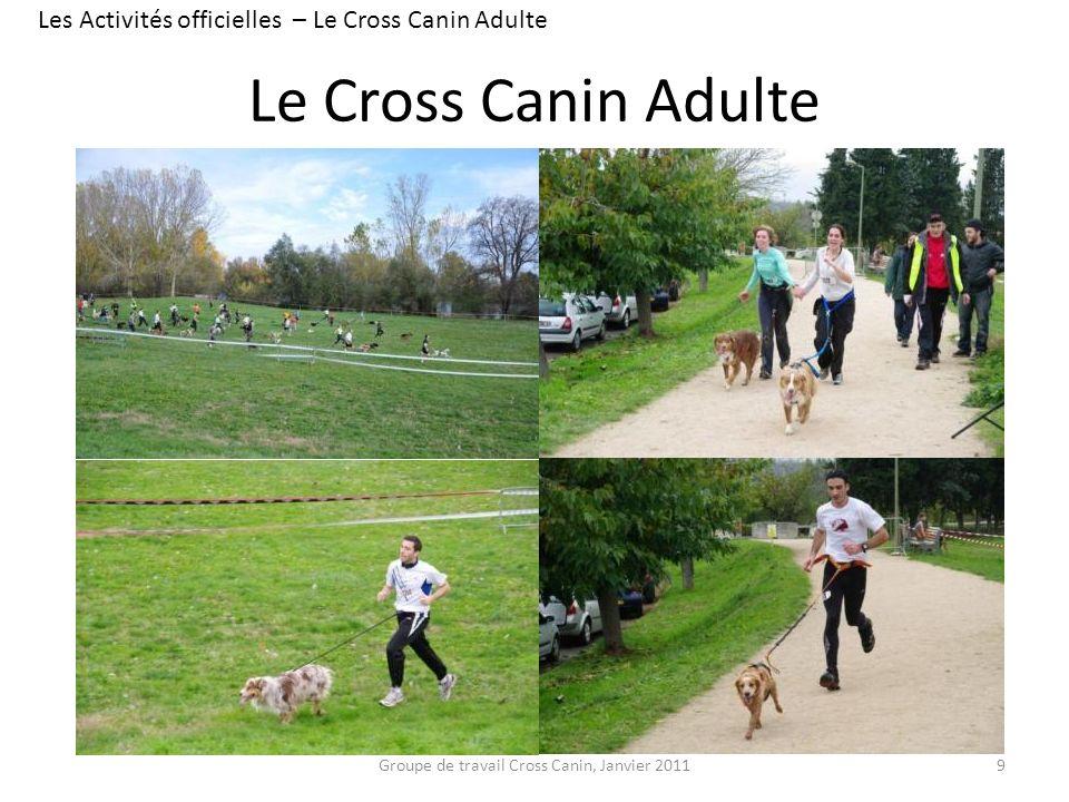 Le Cross Canin Adulte 9 Les Activités officielles – Le Cross Canin Adulte Groupe de travail Cross Canin, Janvier 2011