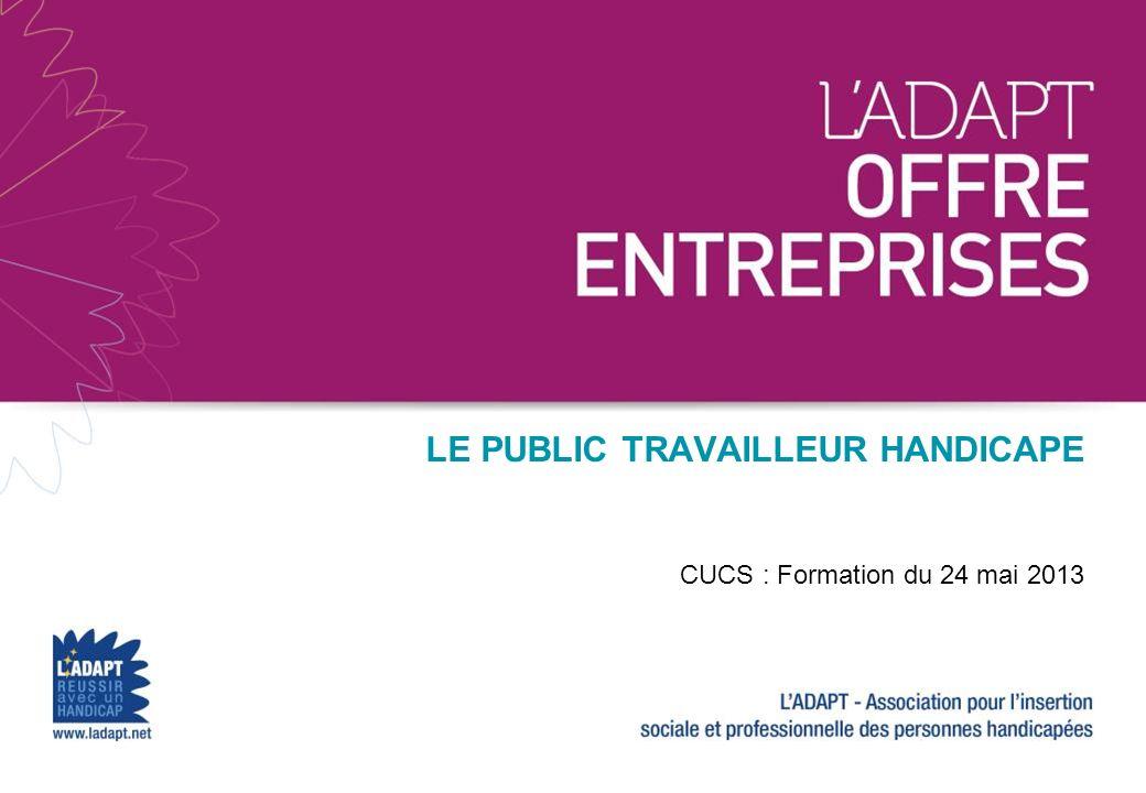 Christophe PILLOT Tél.: + 33 1 47 78 46 00 c.pillot@avicenne.com LE PUBLIC TRAVAILLEUR HANDICAPE CUCS : Formation du 24 mai 2013