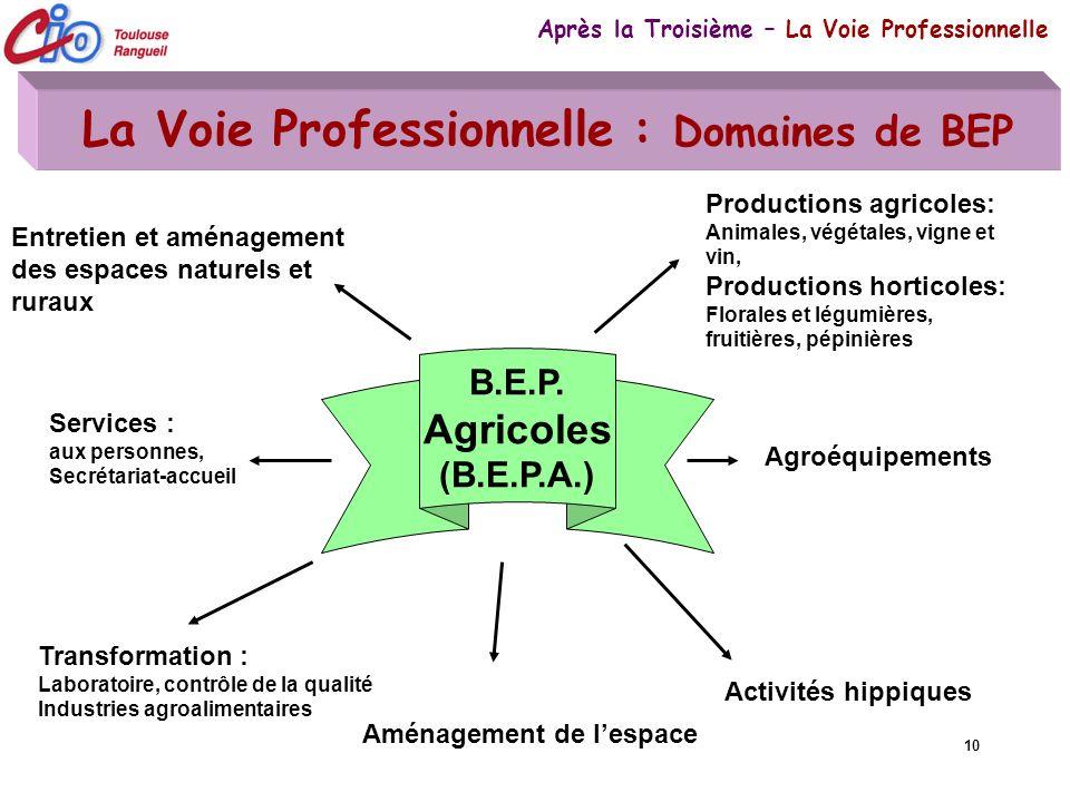10 La Voie Professionnelle : Domaines de BEP Après la Troisième – La Voie Professionnelle B.E.P. Agricoles (B.E.P.A.) Agroéquipements Productions agri