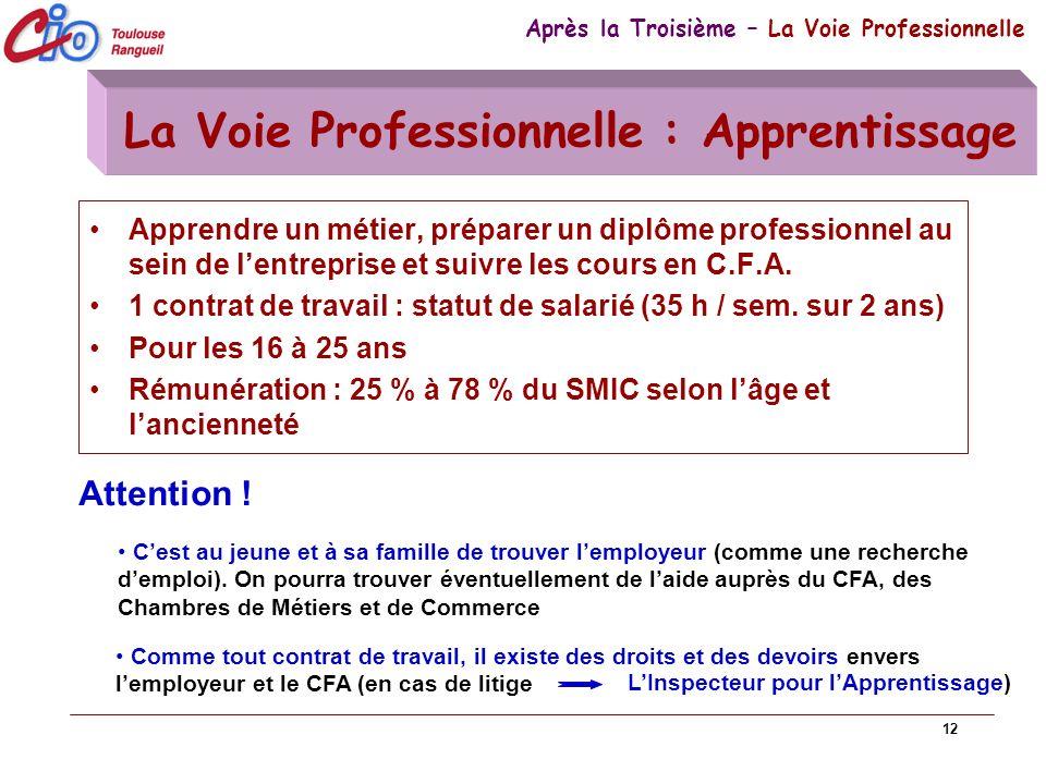 12 La Voie Professionnelle : Apprentissage Apprendre un métier, préparer un diplôme professionnel au sein de lentreprise et suivre les cours en C.F.A.
