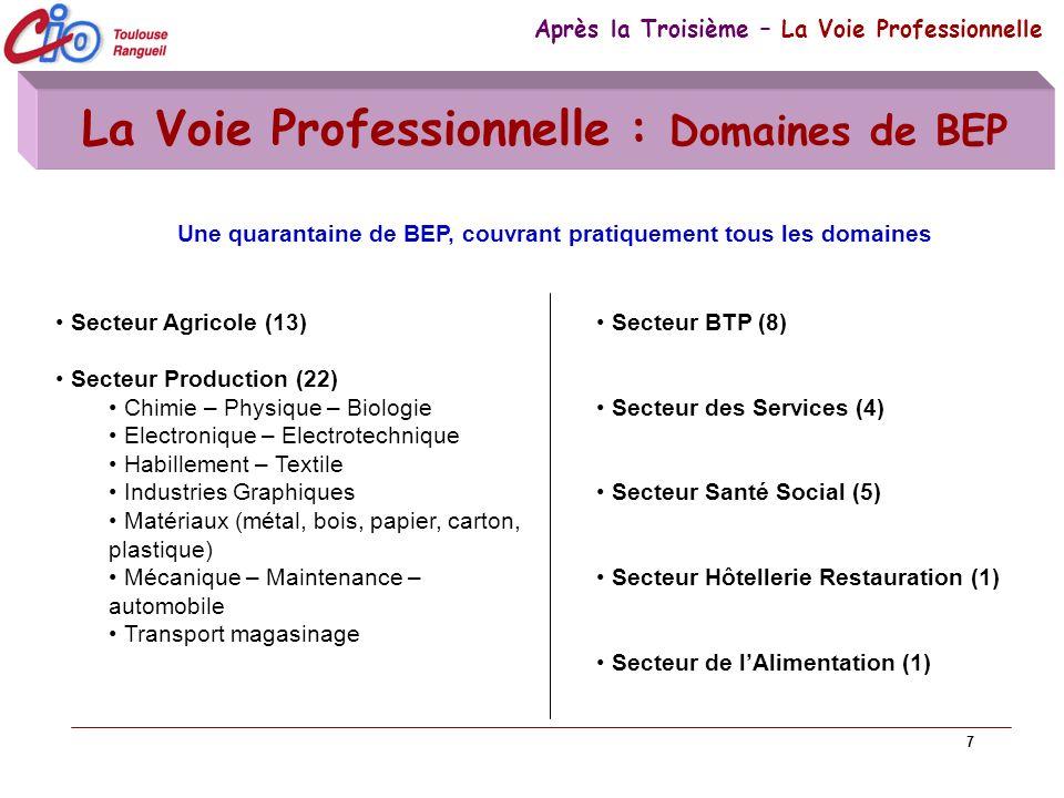 7 La Voie Professionnelle : Domaines de BEP Après la Troisième – La Voie Professionnelle Secteur Agricole (13) Secteur Production (22) Chimie – Physiq