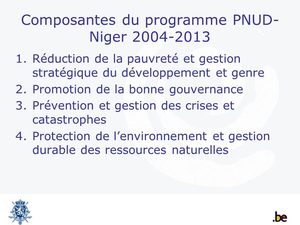 Composantes du programme PNUD- Niger 2004-2013 1.Réduction de la pauvreté et gestion stratégique du développement et genre 2.Promotion de la bonne gou
