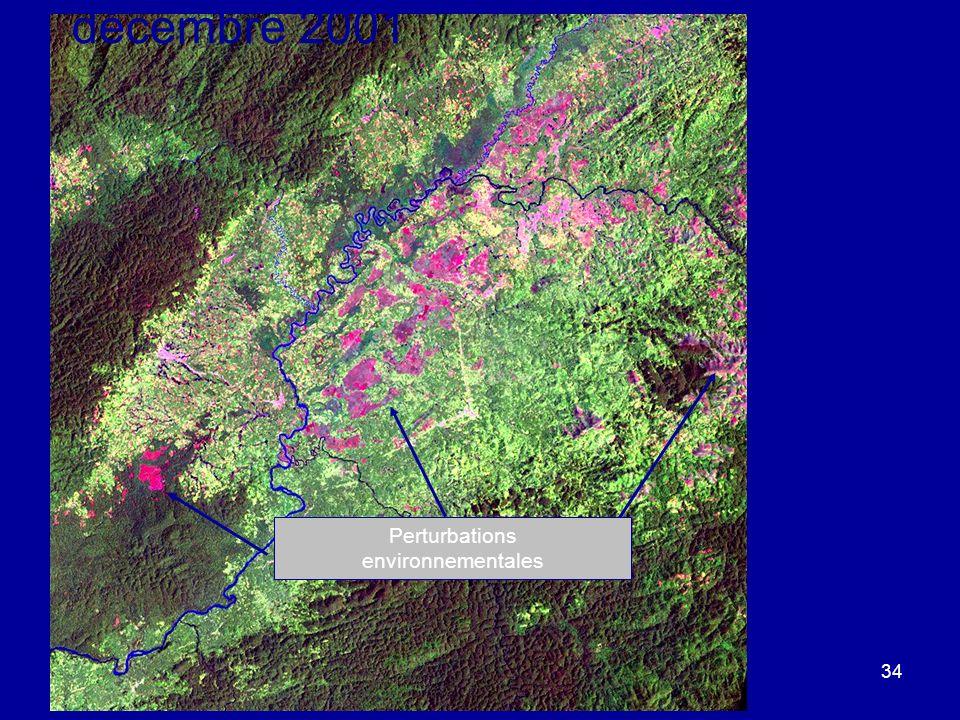 ©Michel A. Bouchard et A.H. Dorsouma 2008 34 Landsat 7 - 11 décembre 2001 Perturbations environnementales