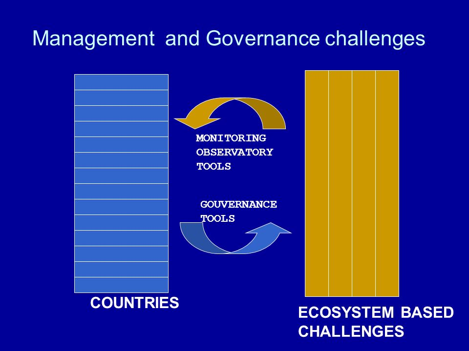 Management and Governance challenges GOUVERNANCE TOOLS MONITORING OBSERVATORY TOOLS COUNTRIES ECOSYSTEM BASED CHALLENGES