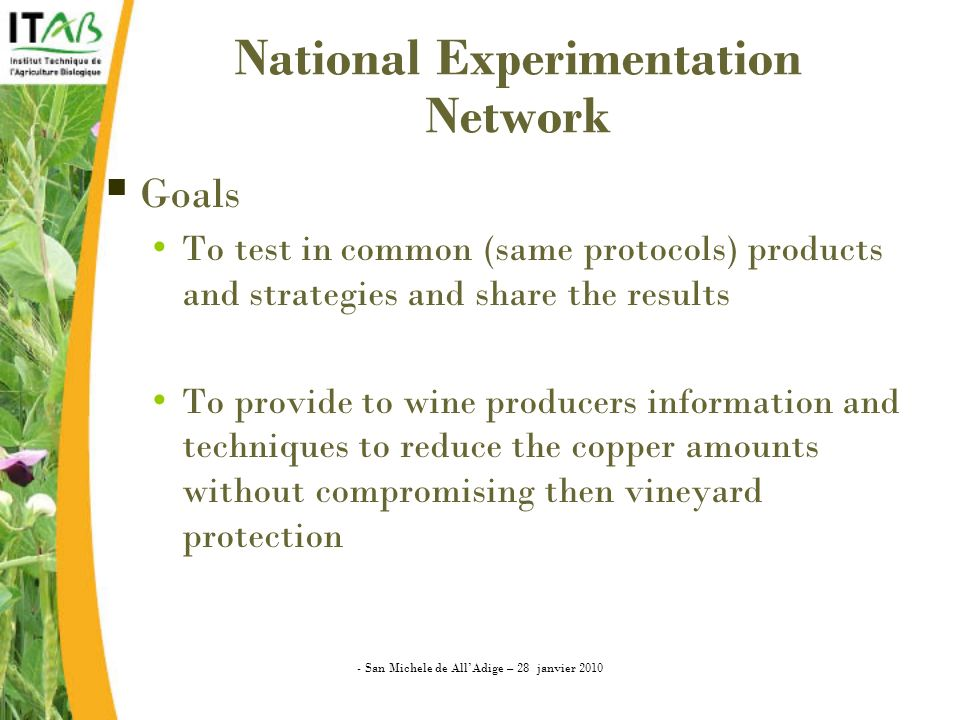 National Experimentation Network Goals To test in common (same protocols) products and strategies and share the results To provide to wine producers information and techniques to reduce the copper amounts without compromising then vineyard protection - San Michele de AllAdige – 28 janvier 2010