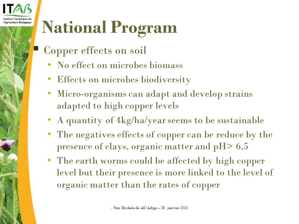National Program Copper effects on soil No effect on microbes biomass Effects on microbes biodiversity Micro-organisms can adapt and develop strains adapted to high copper levels A quantity of 4kg/ha/year seems to be sustainable The negatives effects of copper can be reduce by the presence of clays, organic matter and pH> 6,5 The earth worms could be affected by high copper level but their presence is more linked to the level of organic matter than the rates of copper - San Michele de AllAdige – 28 janvier 2010
