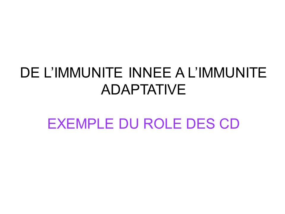 DE LIMMUNITE INNEE A LIMMUNITE ADAPTATIVE EXEMPLE DU ROLE DES CD