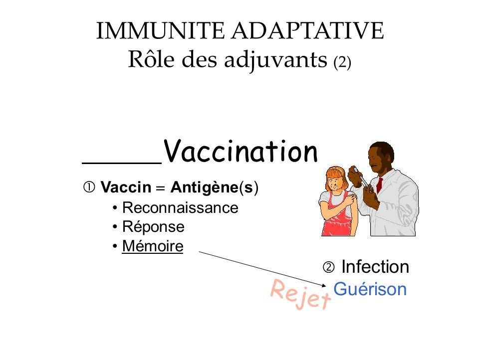 Vaccination Vaccin Antigène(s) Reconnaissance Réponse Mémoire Infection Guérison Rejet IMMUNITE ADAPTATIVE Rôle des adjuvants (2)