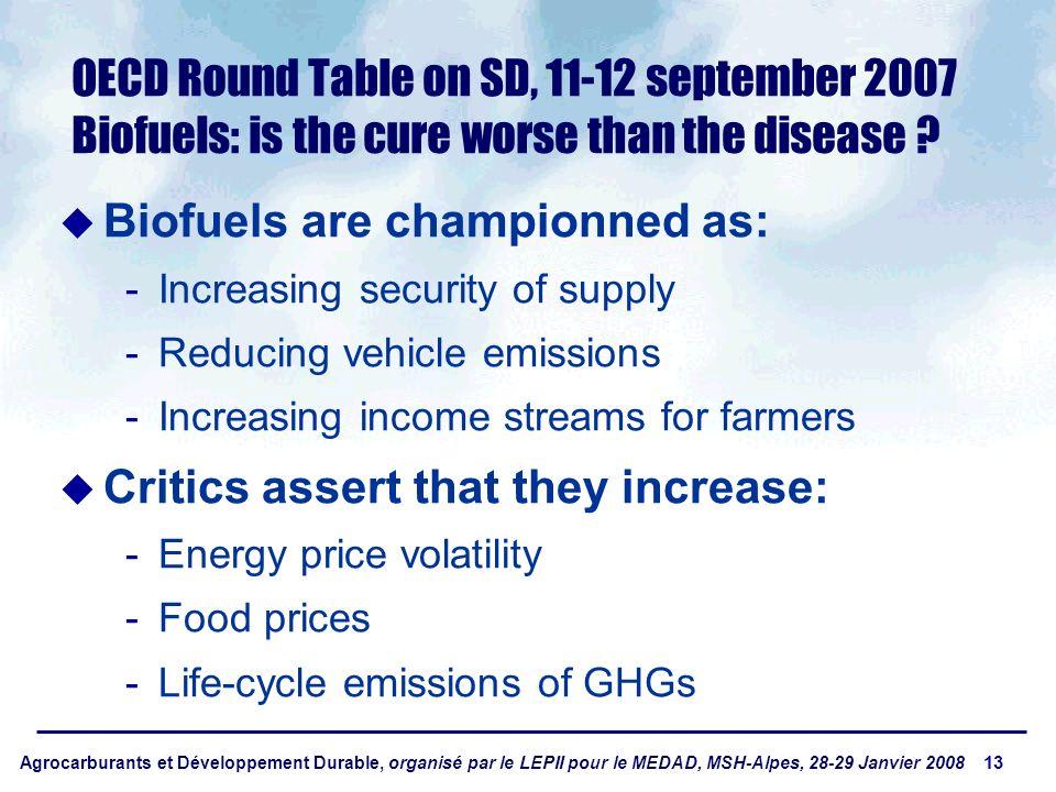 Agrocarburants et Développement Durable, organisé par le LEPII pour le MEDAD, MSH-Alpes, 28-29 Janvier 2008 13 OECD Round Table on SD, 11-12 september