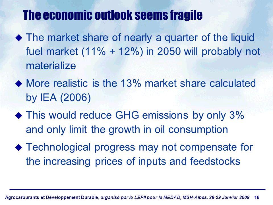 Agrocarburants et Développement Durable, organisé par le LEPII pour le MEDAD, MSH-Alpes, 28-29 Janvier 2008 16 The economic outlook seems fragile The