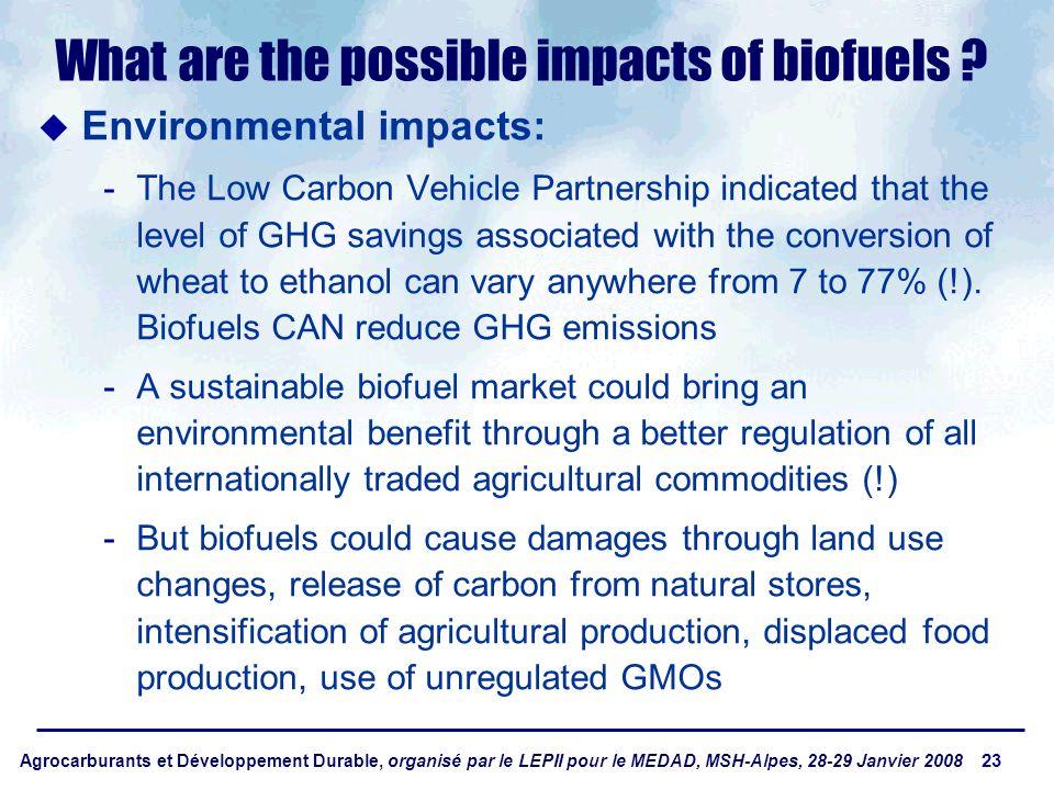 Agrocarburants et Développement Durable, organisé par le LEPII pour le MEDAD, MSH-Alpes, 28-29 Janvier 2008 23 What are the possible impacts of biofue