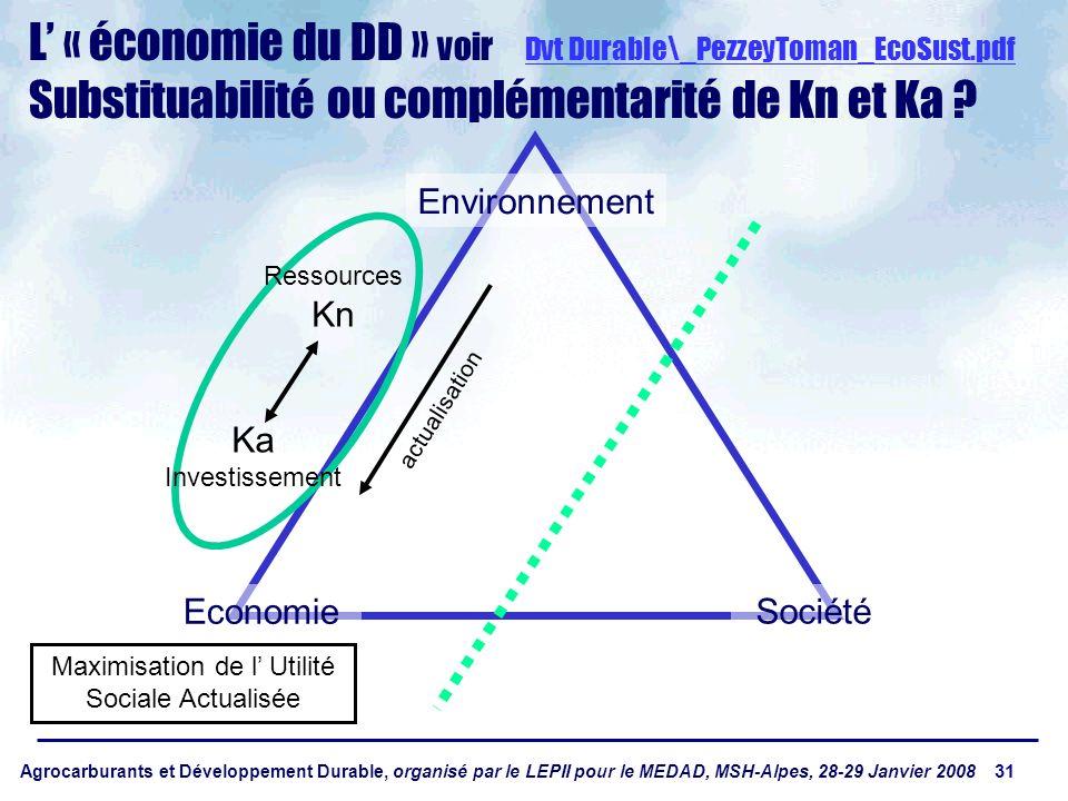 Agrocarburants et Développement Durable, organisé par le LEPII pour le MEDAD, MSH-Alpes, 28-29 Janvier 2008 31 Economie Société Environnement L « économie du DD » voir Dvt Durable\_PezzeyToman_EcoSust.pdf Substituabilité ou complémentarité de Kn et Ka .