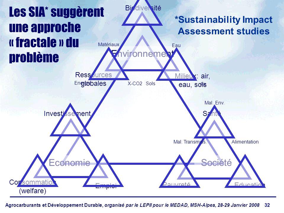 Agrocarburants et Développement Durable, organisé par le LEPII pour le MEDAD, MSH-Alpes, 28-29 Janvier 2008 32 Economie Société Environnement Ressources globales Milieux: air, eau, sols Biodiversité Pauvreté Education Santé Consommation (welfare) Emploi Investissement Les SIA* suggèrent une approche « fractale » du problème *Sustainability Impact Assessment studies Energie X-CO2 Matériaux Sols Air Eau Mal.